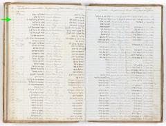 Lewis Levy birth record