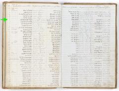 Moses Joseph Friedman birth record
