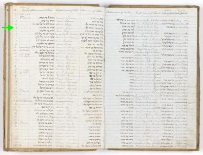 Asher Levy birth record