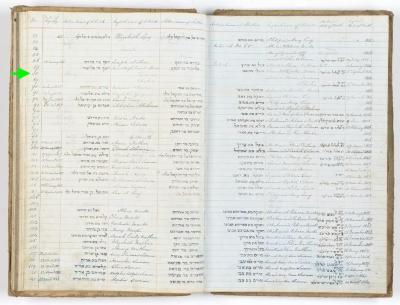 Henry Friedman birth record