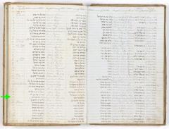 Elizabeth Rheuben birth record